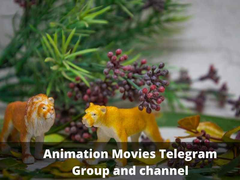 Animation Movies Telegram Group and channel Links